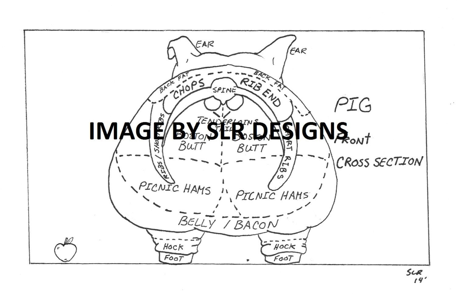 hight resolution of pig diagram front cross section