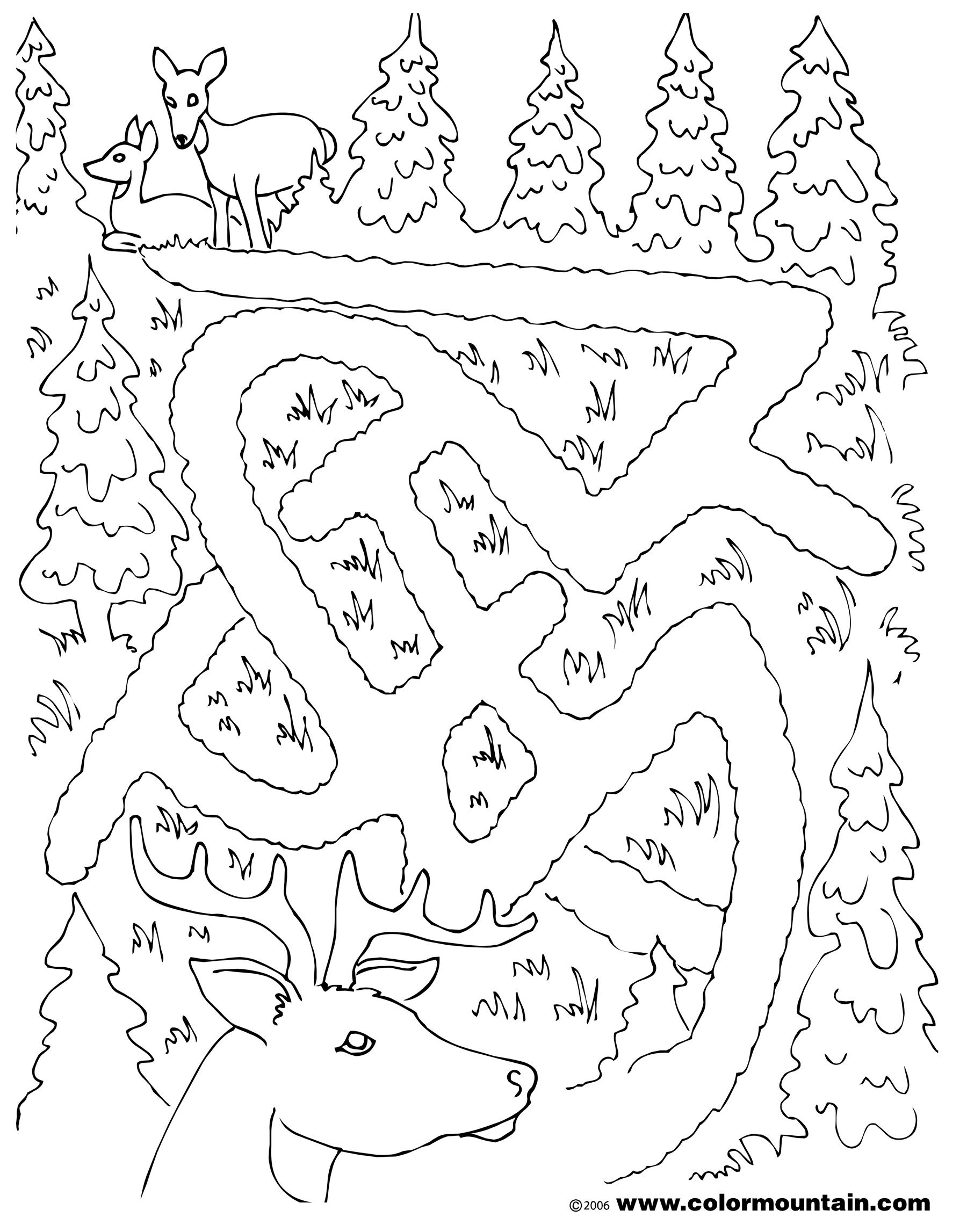 Deer Maze Activity Coloring Sheet Coloring Page