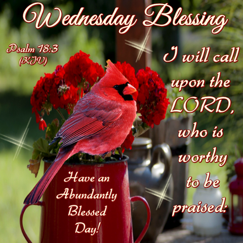 Good morning happy wednesday i pray that you have a safe and good morning happy wednesday i pray that you have a safe and blessed day m4hsunfo Images