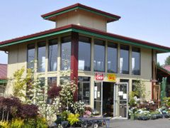 Tsugawa Nursery In Woodland Washington