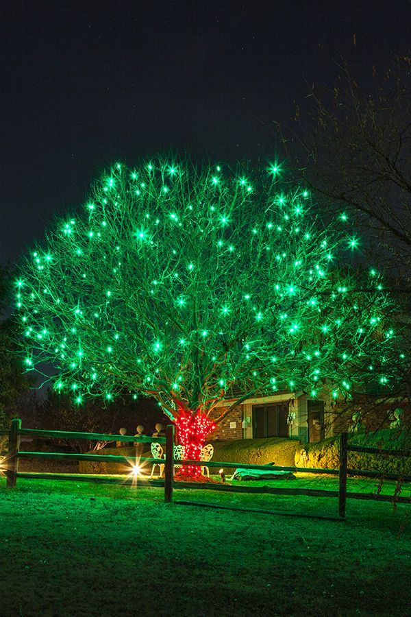 christmas light installation and hanging services by swingle your professional christmas light hanging business for metro denver - Christmas Light Hanging Business