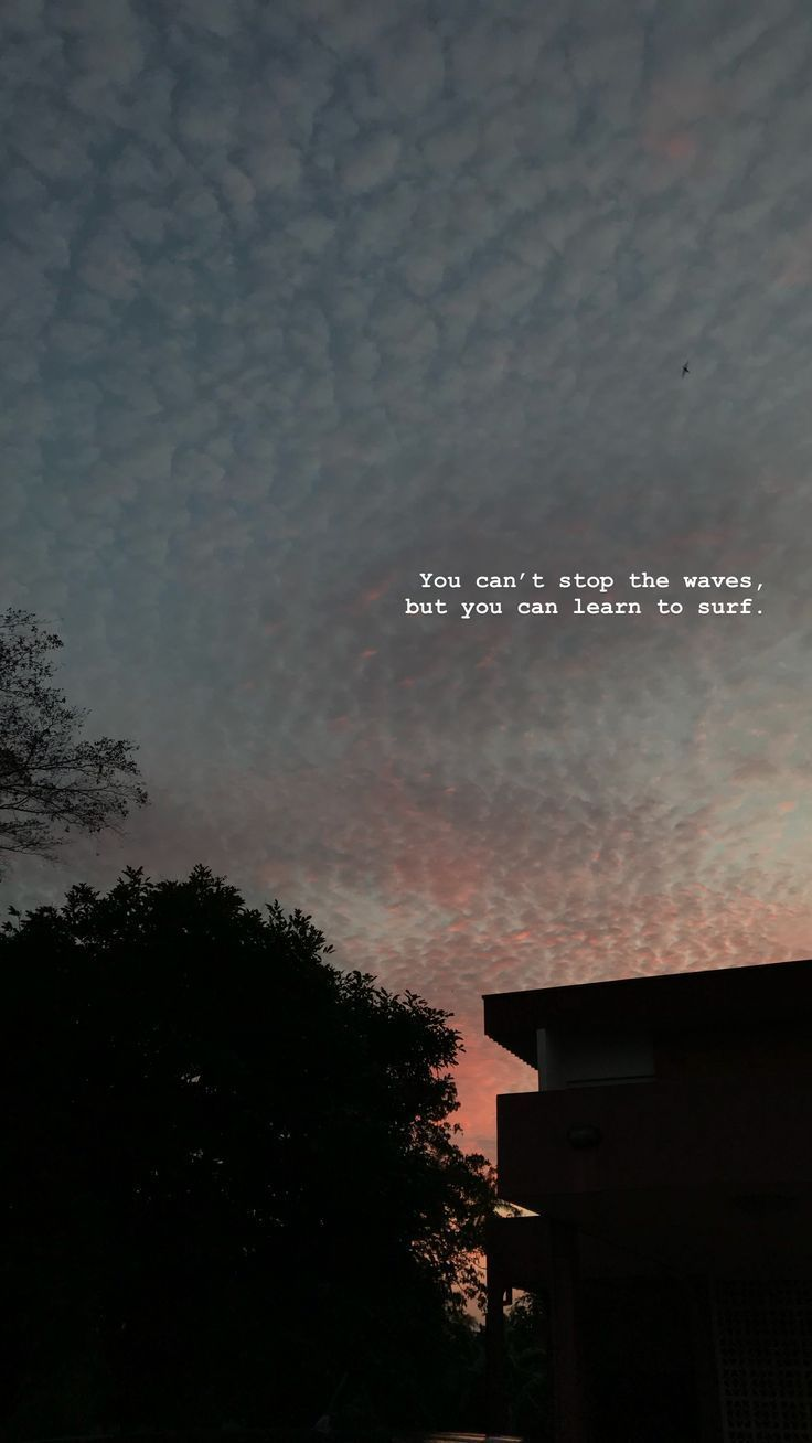 Love Quotes : you can't stop the way but you can learn to surf