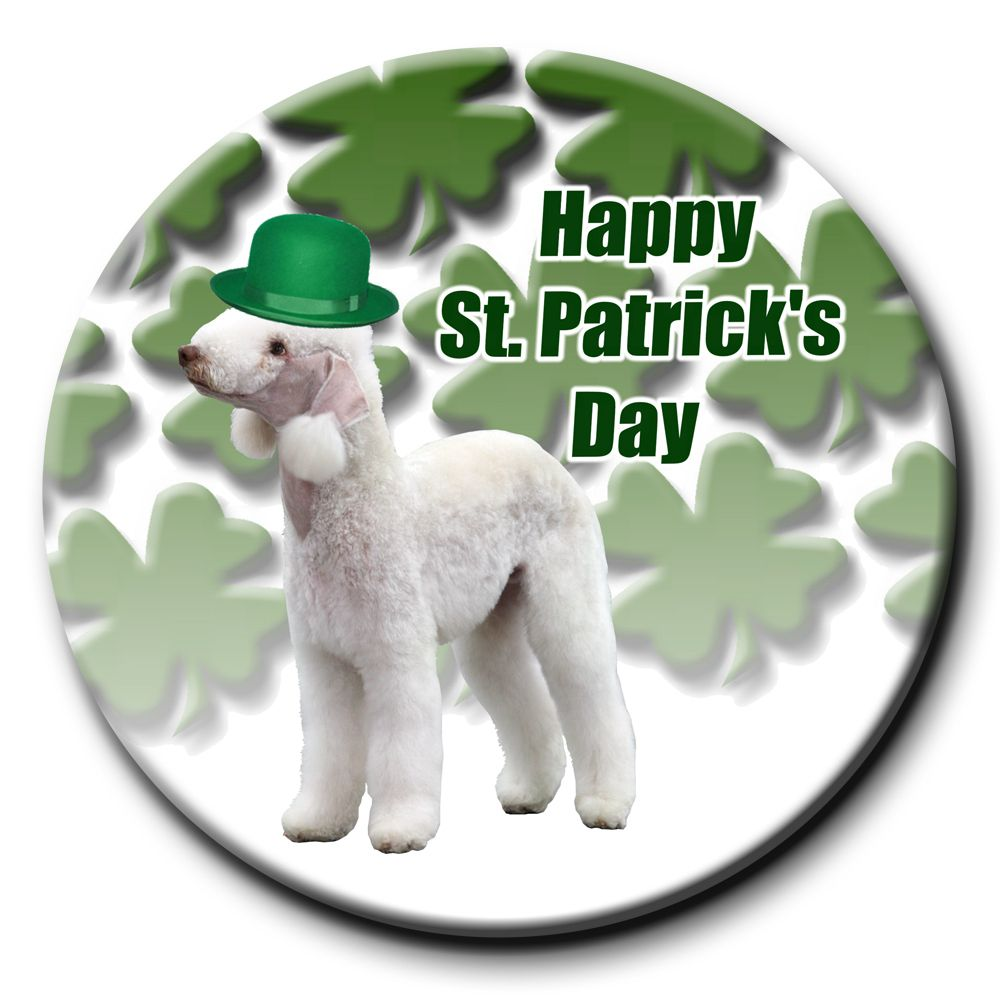 Wag Whimsy Dog Gifts - Bedlington Terrier St Patricks Day Pin Badge, $3.99 (http://www.wagwhimsy.com/bedlington-terrier-st-patricks-day-pin-badge/)
