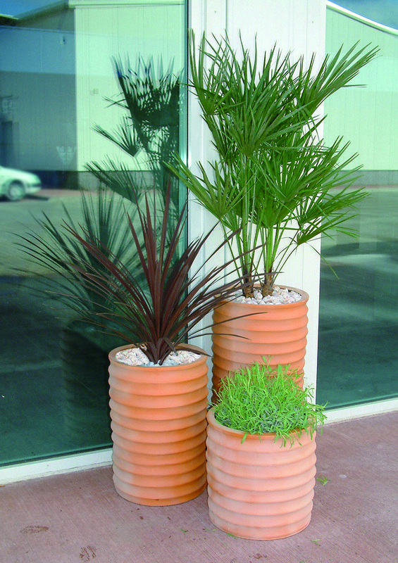 office plant displays. Stunning Office Plant Displays, Beautiful Flowers. Real And . For Displays