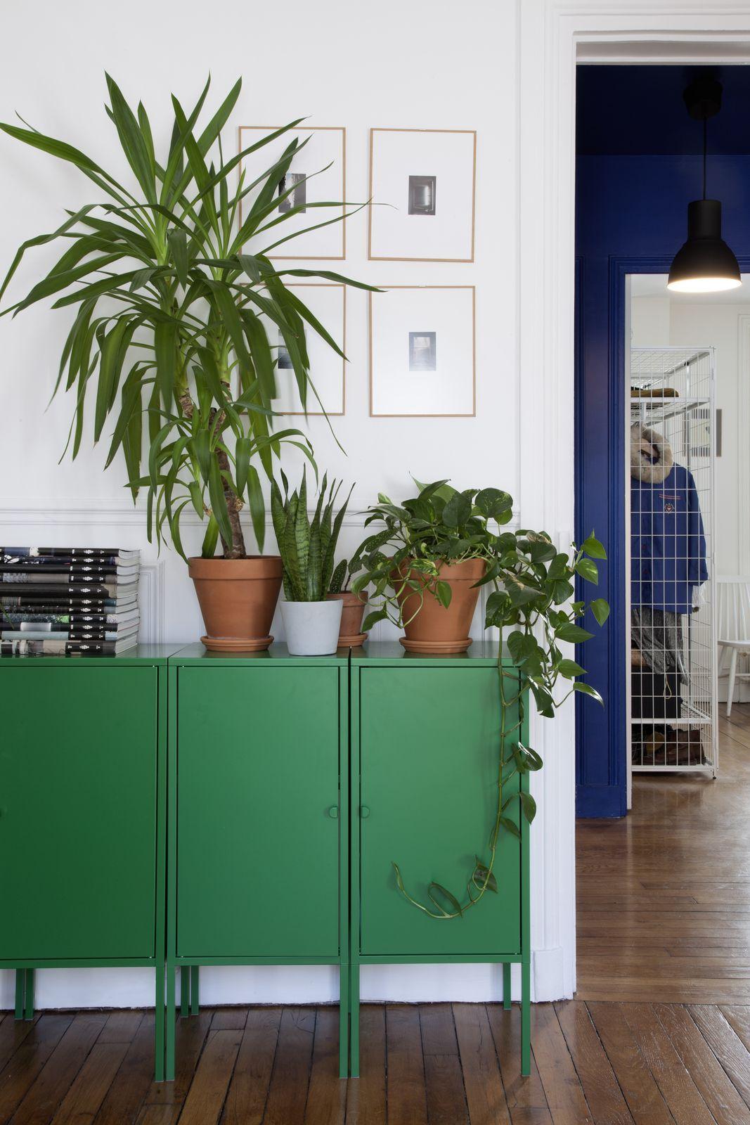 Intérieur contemporain séjour ikea 2010s placard lixhult vert design suédois mobilier livingroomideas