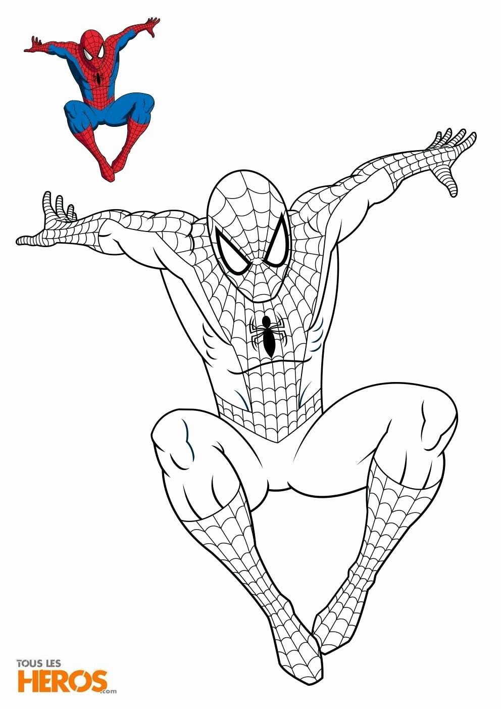 10 Spiderman Coloring Spiderman Coloring Cartoon Coloring Pages