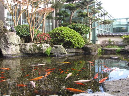 Koi Pond And The Hotel Kabuki In San Francisco With Images