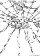 Spiderman Dibujos Para Colorear Del Hombre Araña Cumpleaños