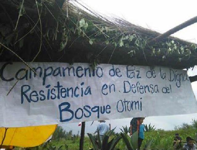 México: Empresa Autovan ingresa, resguardada por granaderos, a bosque otomí de Xochicuautla