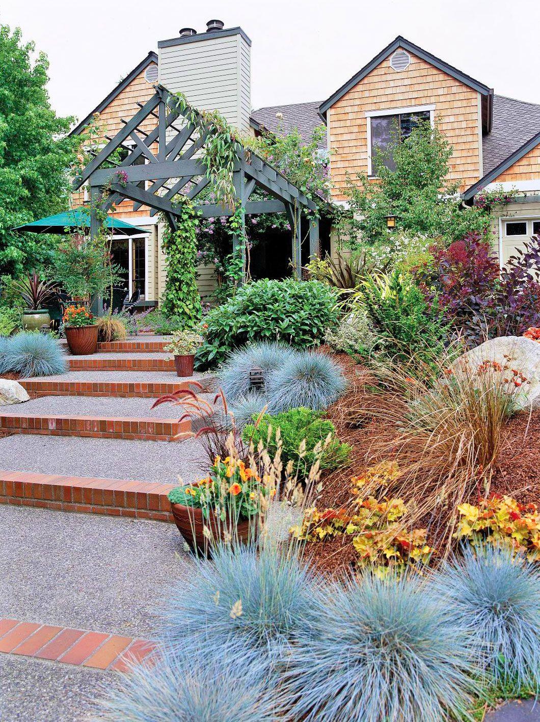 Pin On Aaa Garden Plants