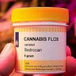 Si della Toscana alla Cannabis