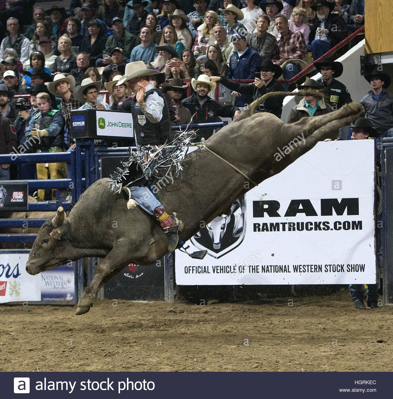 Pbr Stock Quote Image Result For Pbr Bulls 2017  Bulls  Pinterest