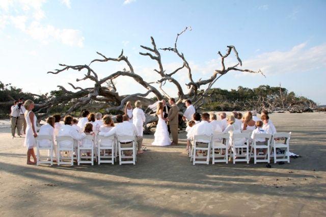 Pin By Jekyll Island Club Resort On Weddings Beach Wedding Pics Driftwood Wedding Arbors Atlanta Wedding Venues
