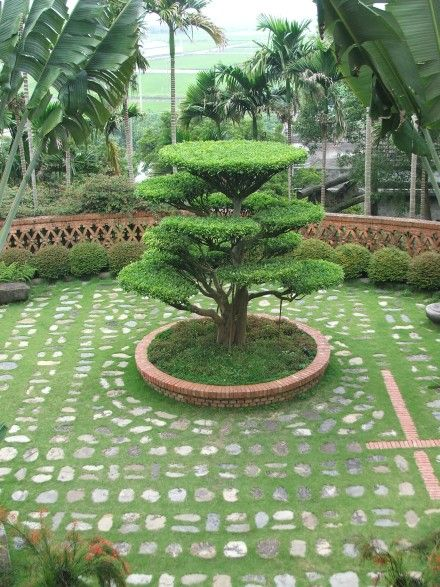 Charmant Home Garden Designs In India