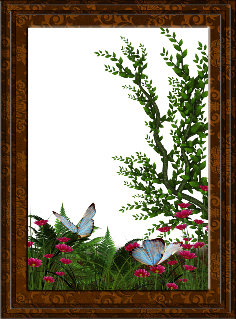 garden frame by collect-and-creat | frames | Pinterest | Frame ...