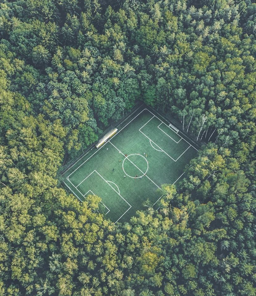 A Soccer Field In The Middle Of A Forest Football Pitch