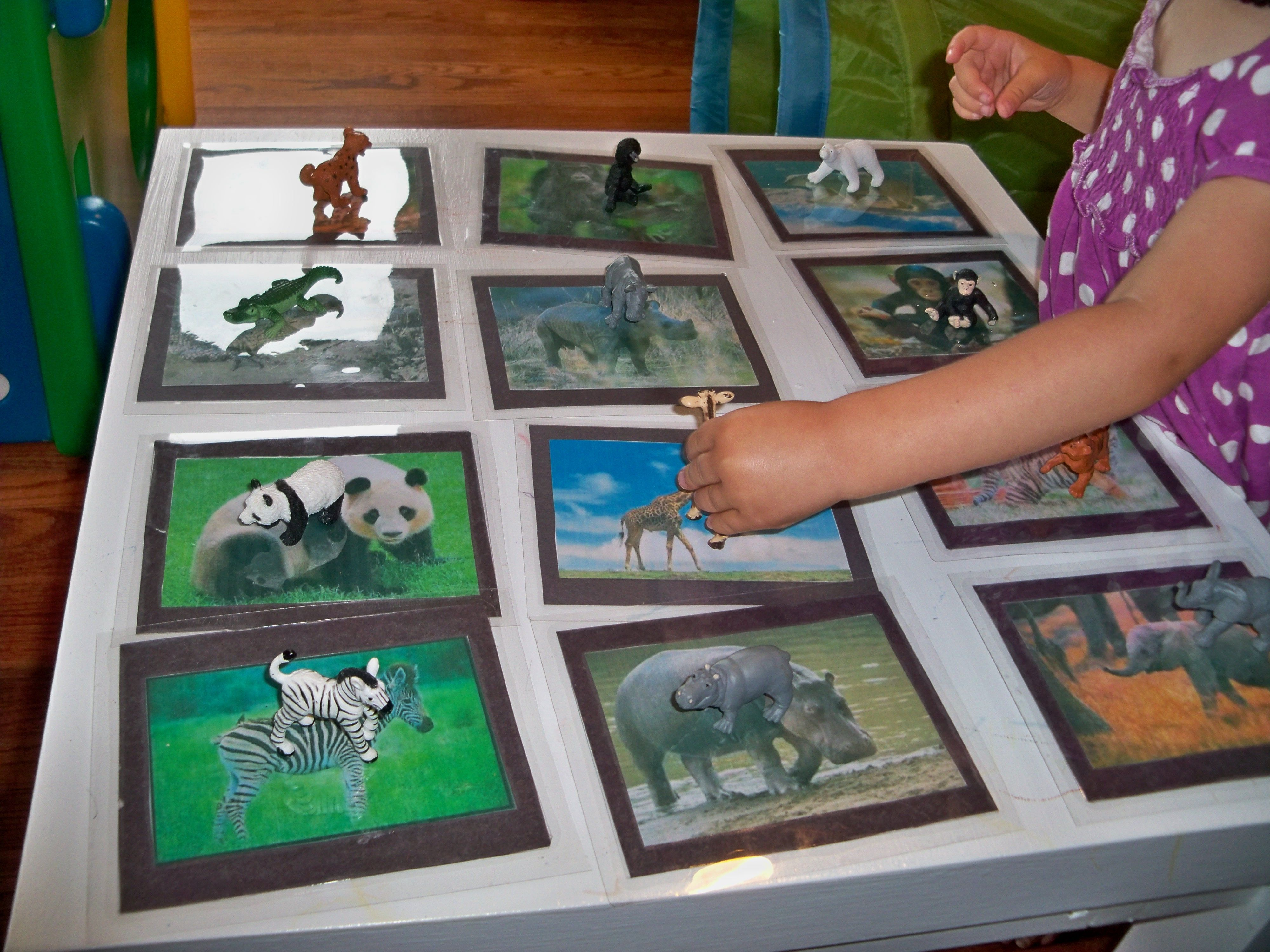 Kids Can Match One Plastic Animal To Each Corresponding