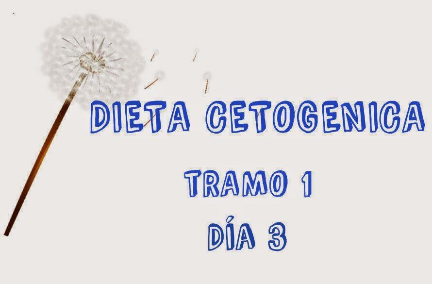 Ideas menu dieta cetogenica tramo 1