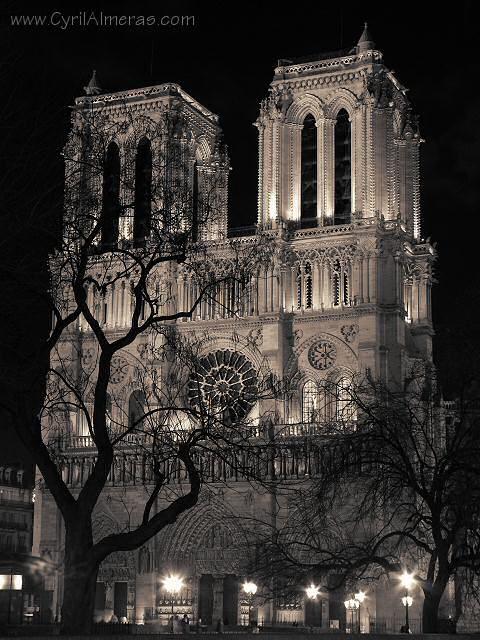La Nuit En Noir Et Blanc Notre Dame De Paris Cathedrale Noir Et Blanc Paris Noir Et Blanc