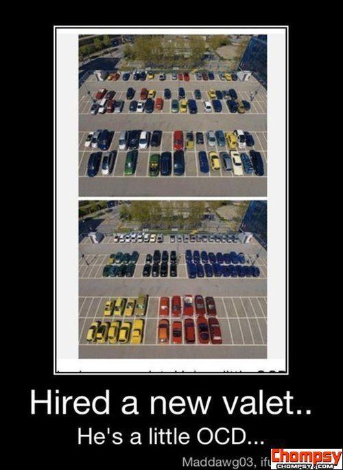 funny ocd pictures parking cars