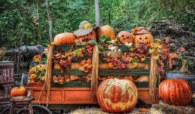 Halloween ☠ ℋαɾṿεѕт αṉḋ ℋαυṉтѕ ☠ Pinterest Hallows eve and