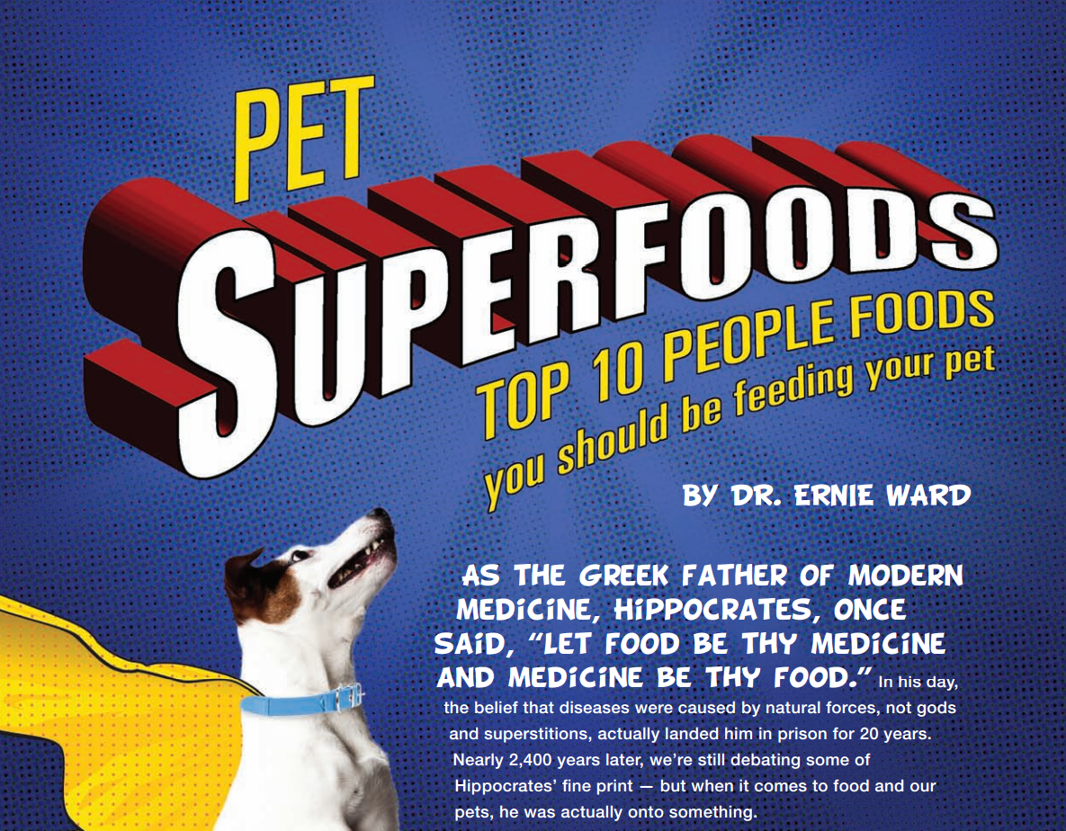 Pet Superfoods: 10 Human Foods You Should Be Feeding Your Pet