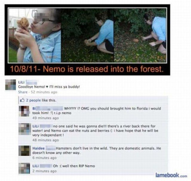 Best. FB Statusu0027. EVER. On A Side Note, Are People Really This Stupid? God  Help Us All.