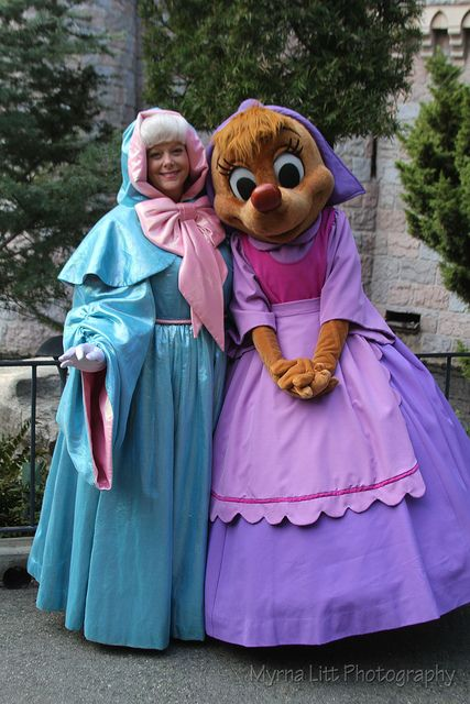 Fairy Godmother And Perla Disney World Characters Fairy
