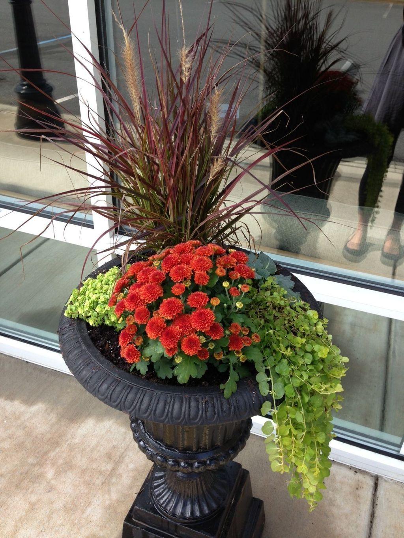 20 Creative Diy Fall Planters Ideas You Will Simply Adore 640 x 480