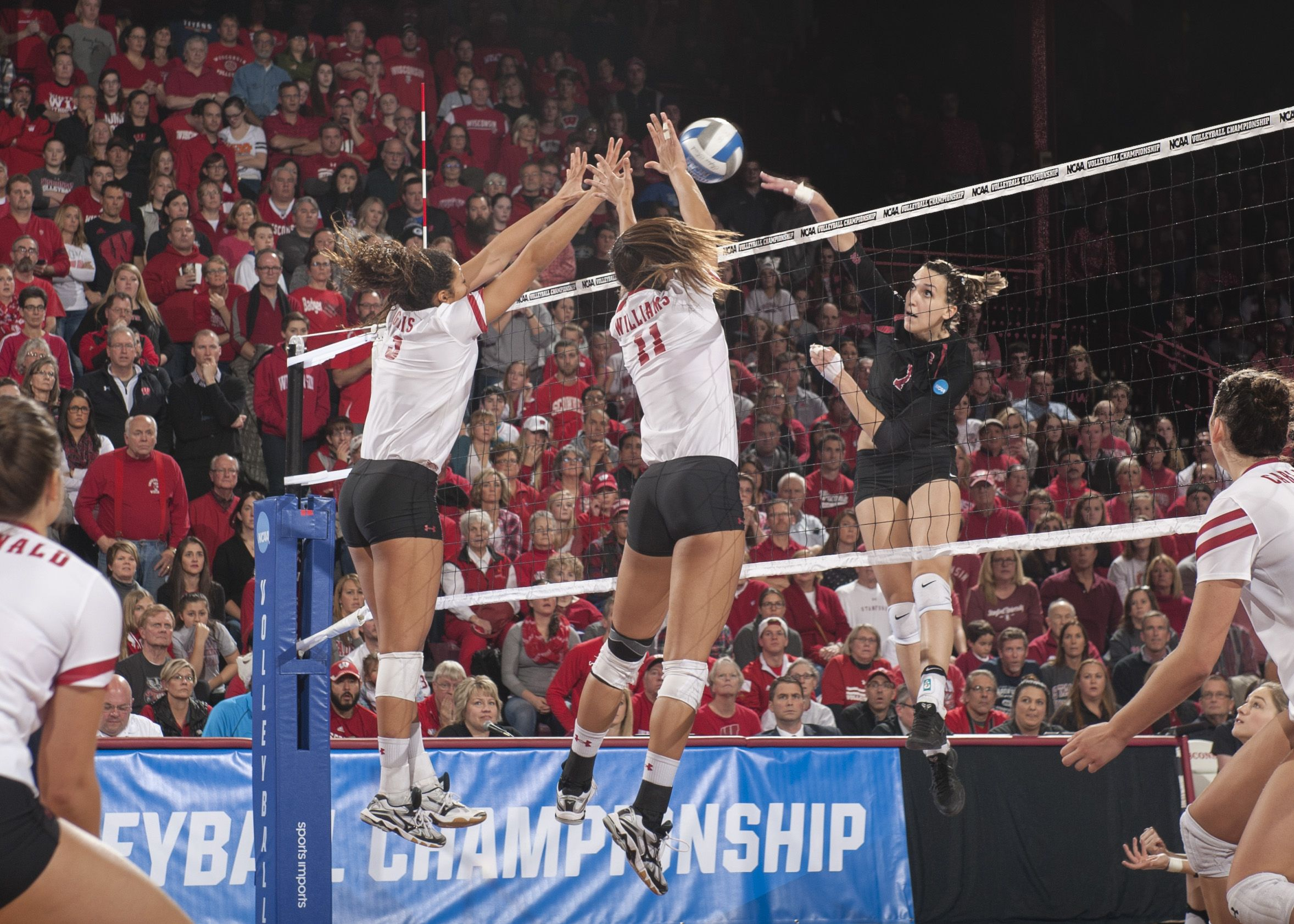 Hello Columbus Stanford Joins Nebraska Minnesota Texas In Ncaa Semis Stanford Volleyball Volleyball Pictures Female Volleyball Players