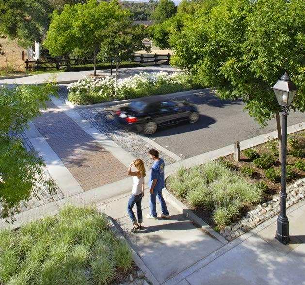 Bioswale Streetscape Design Landscape And Urbanism Urban Landscape