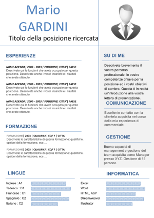 Esempio Di Cv Modificabile Curriculum Vitae Europeo Back To The
