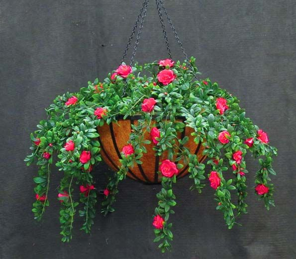 Ferns And Ivy In Hanging Baskets Outdoor Artificial Flowers Azalea Basket Commercial