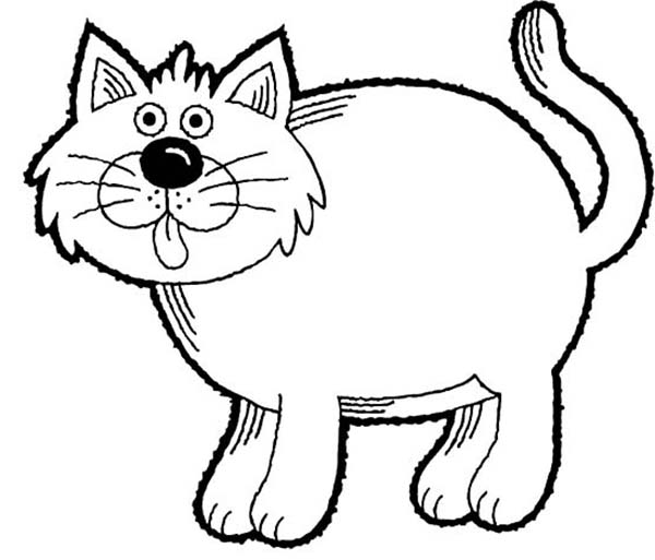 Pin Di Kitty Cat Coloring Page