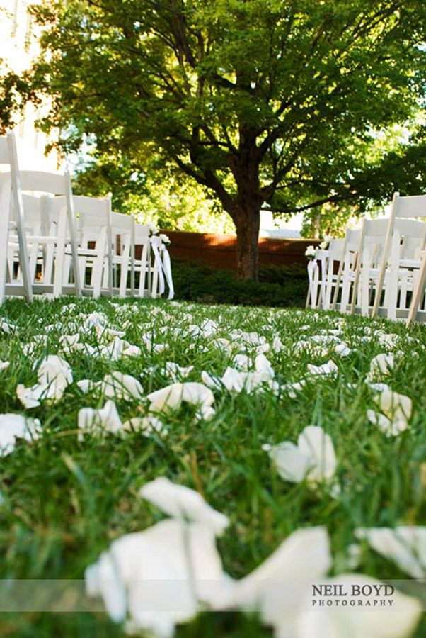 White flower petals for wedding ceremony.  The Carolina Inn outdoor wedding in Chapel Hill, NC