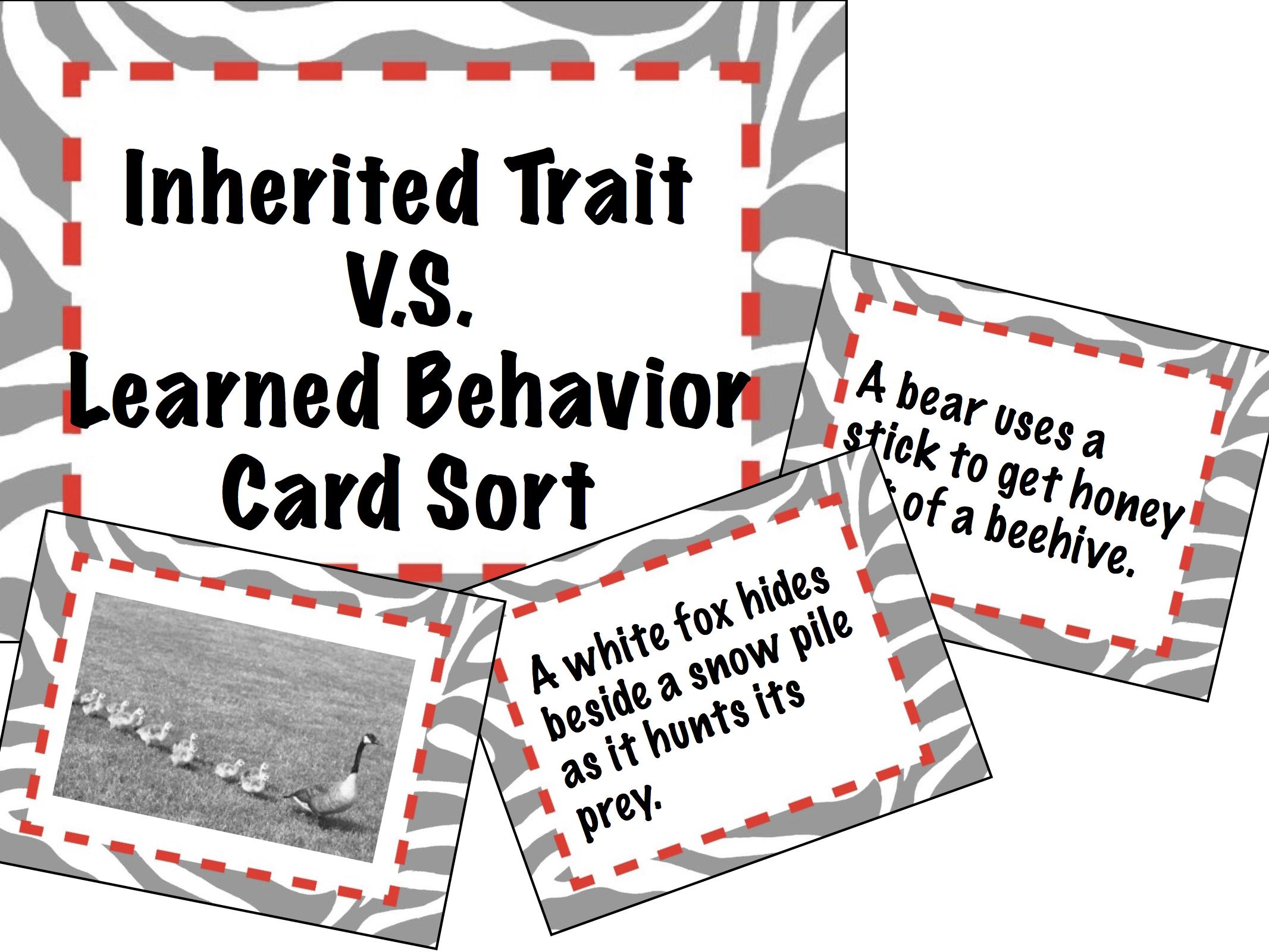 Card Sort Inherited Traits Vs Learned Behavior