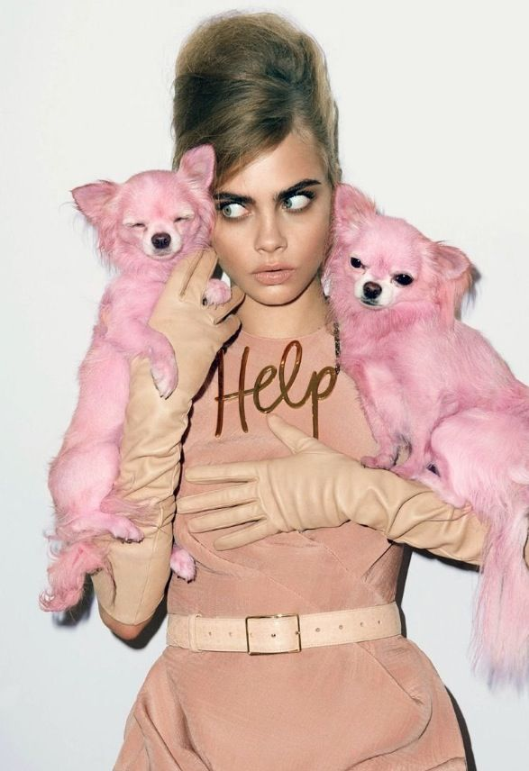 Barbie Cara
