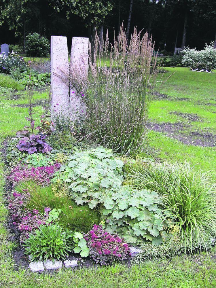 Stauden boomen: bei Hobbygärtnern löst die vielseitige Pflanzengruppe selbst in Kästen und Kübeln immer häufiger den klassischen Sommerflor ab. Auch im öffentlichen Grün lässt sich Ähnliches verfolgen. Mehr und mehr Kommunen verabschieden sich von der kostenintensiven Saisonbepflanzung, entscheiden sich für Dauerhaftes. Warum also nicht auch bei der Grabgestaltung Stauden verwenden – als Raum bildendes Element, als Bodendecker, ja vielleicht sogar, um ganz auf die Wechselbepflanzung zu verzic... #friedhofsdekorationenallerheiligen