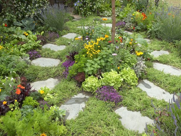 culinary herb garden this small garden design which includes lawn chamomile thyme