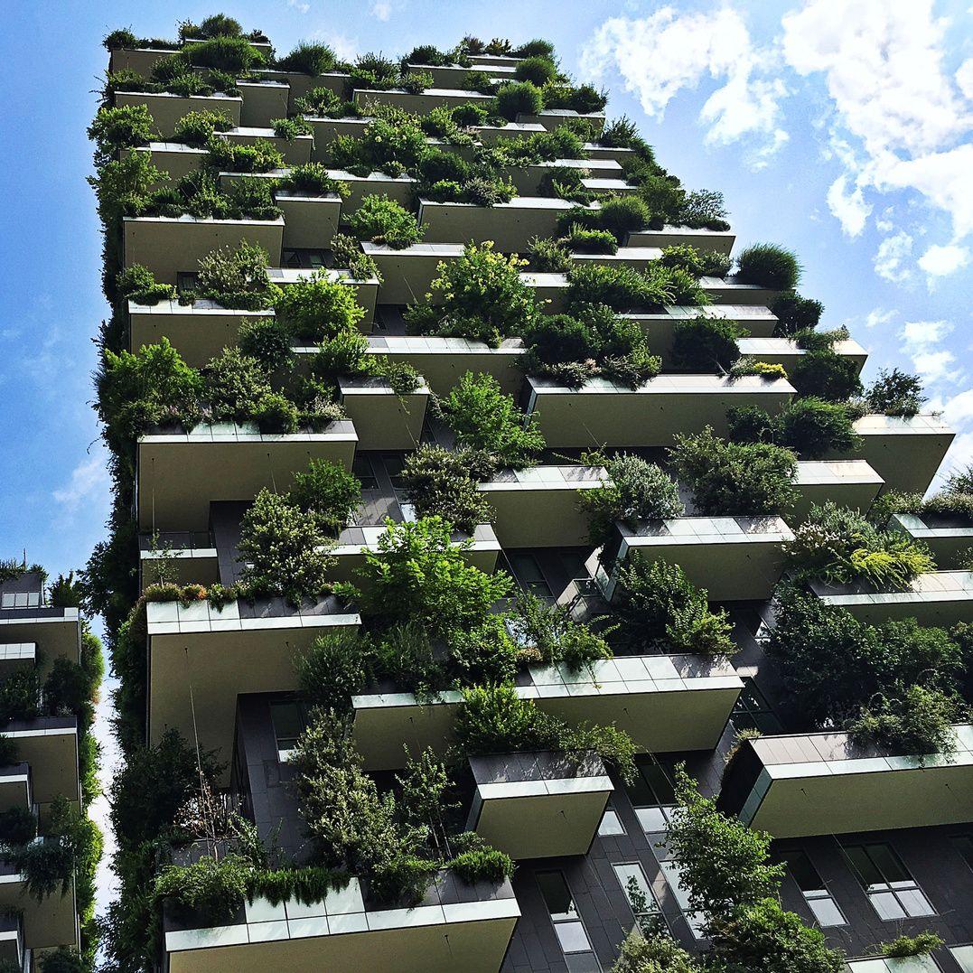 Wow So Geht Vertikales Gartnern Verticalgardening Urbangardening Mailand Milano Italy Italie Garten Design Stadtgarten Gartengestaltung