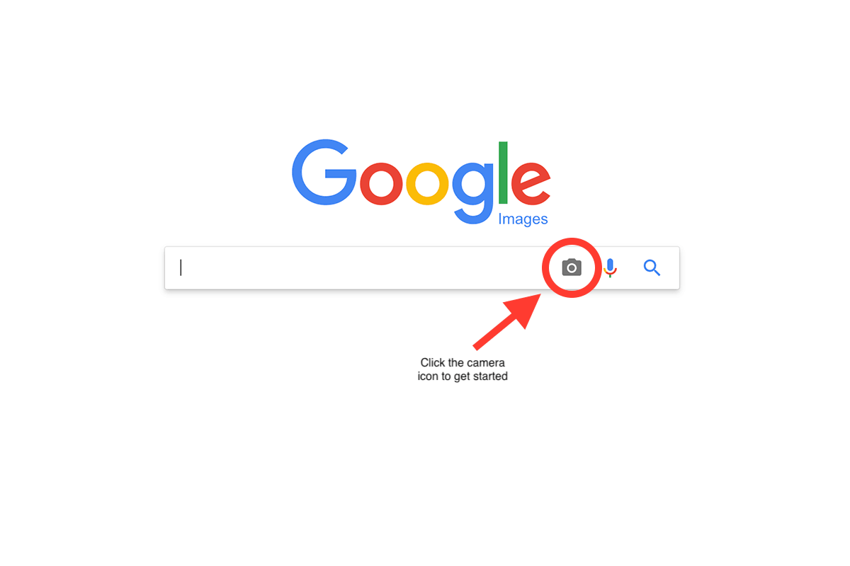 Find Your Images Online Using Reverse Image Search On Google Photoshelter Blog Reverse Image Search Image Search Your Image