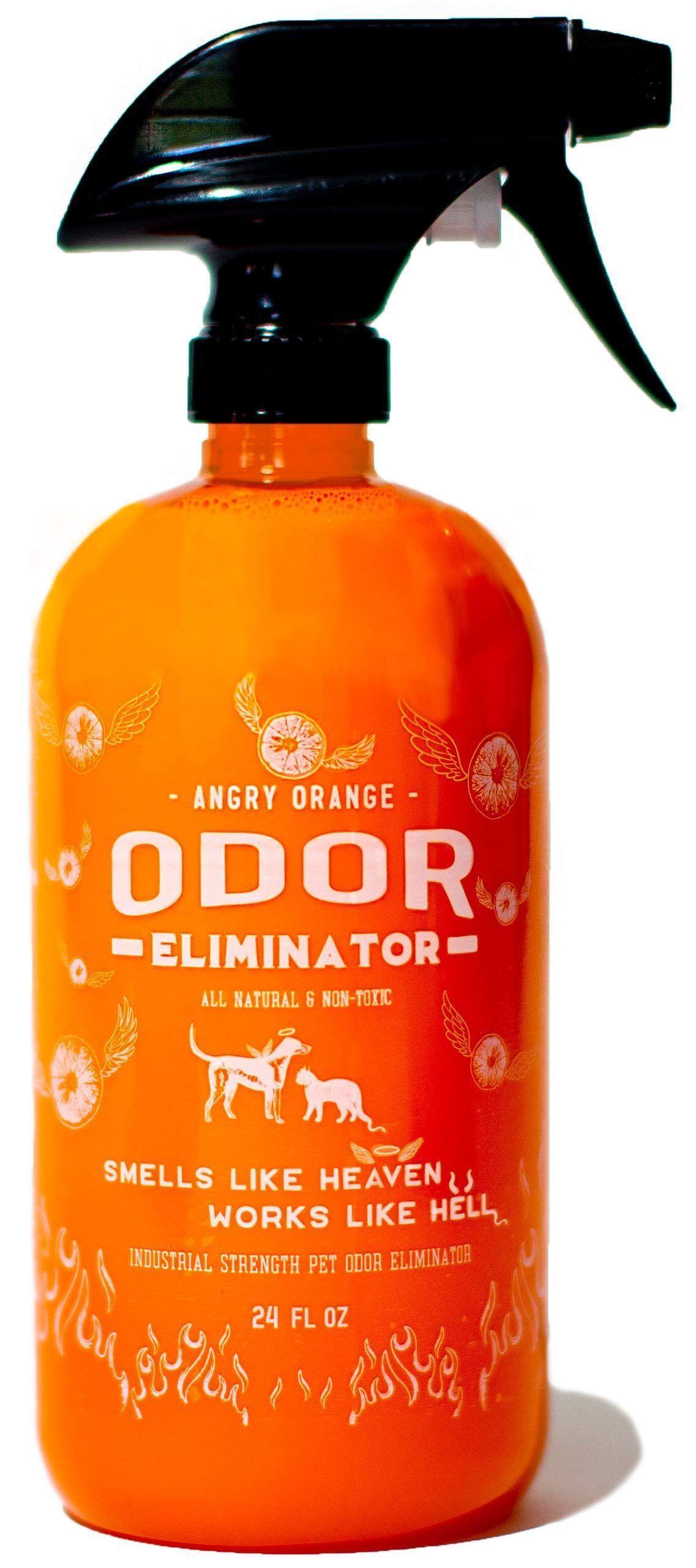 Dog Urine Odor Remover Outdoor Dog Urine Odor Remover In 2020 Dog Urine Odor Remover Pet Spray Pet Odor Eliminator