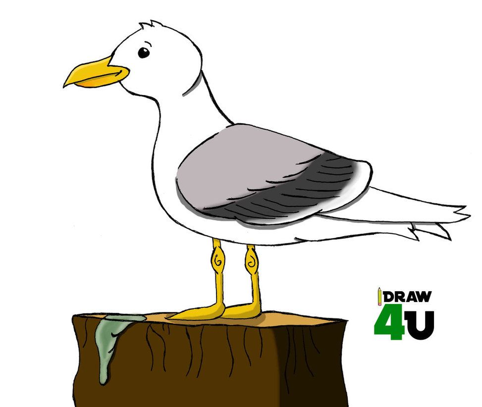 seagull cartoon images images nursery room pinterest cartoon rh pinterest com seagull cartoon pics seagull cartoon drawing