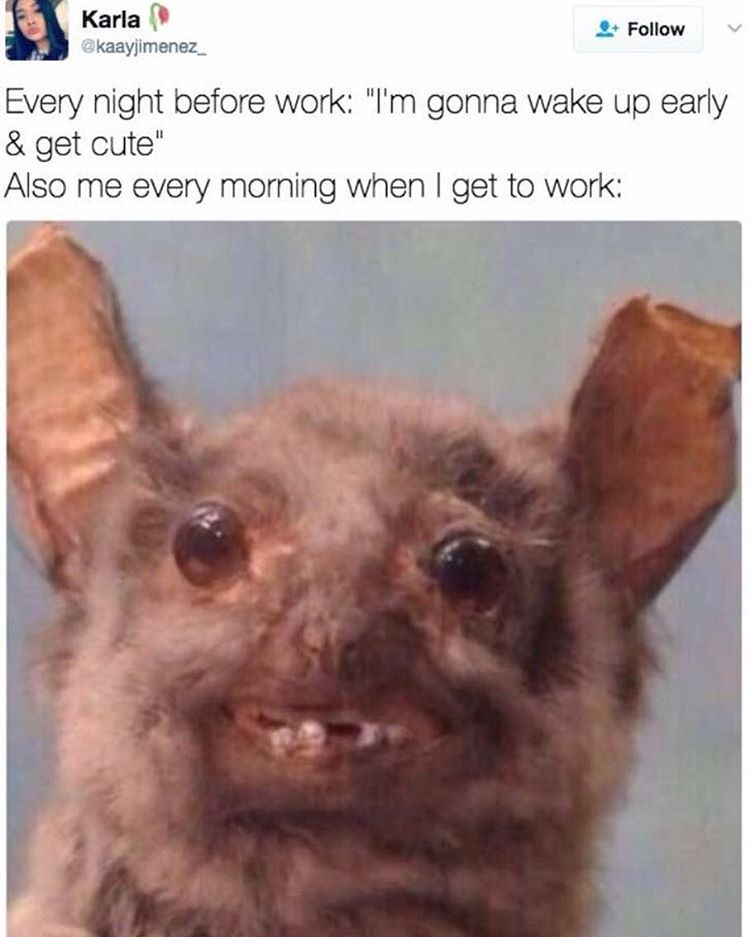 The Struggle Is Real Gremlin Funny Memes About Work Funny Friday Memes Work Memes