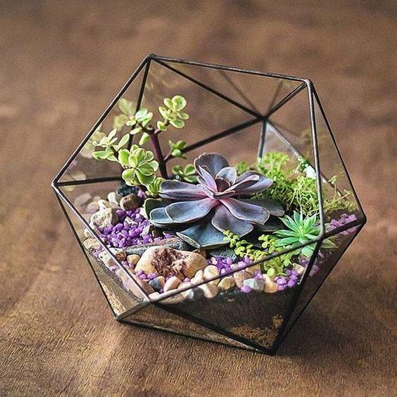 60+ Charming Succulent Indoor Garden Ideas 2019 - Page 42 of 64 #succulentterrarium