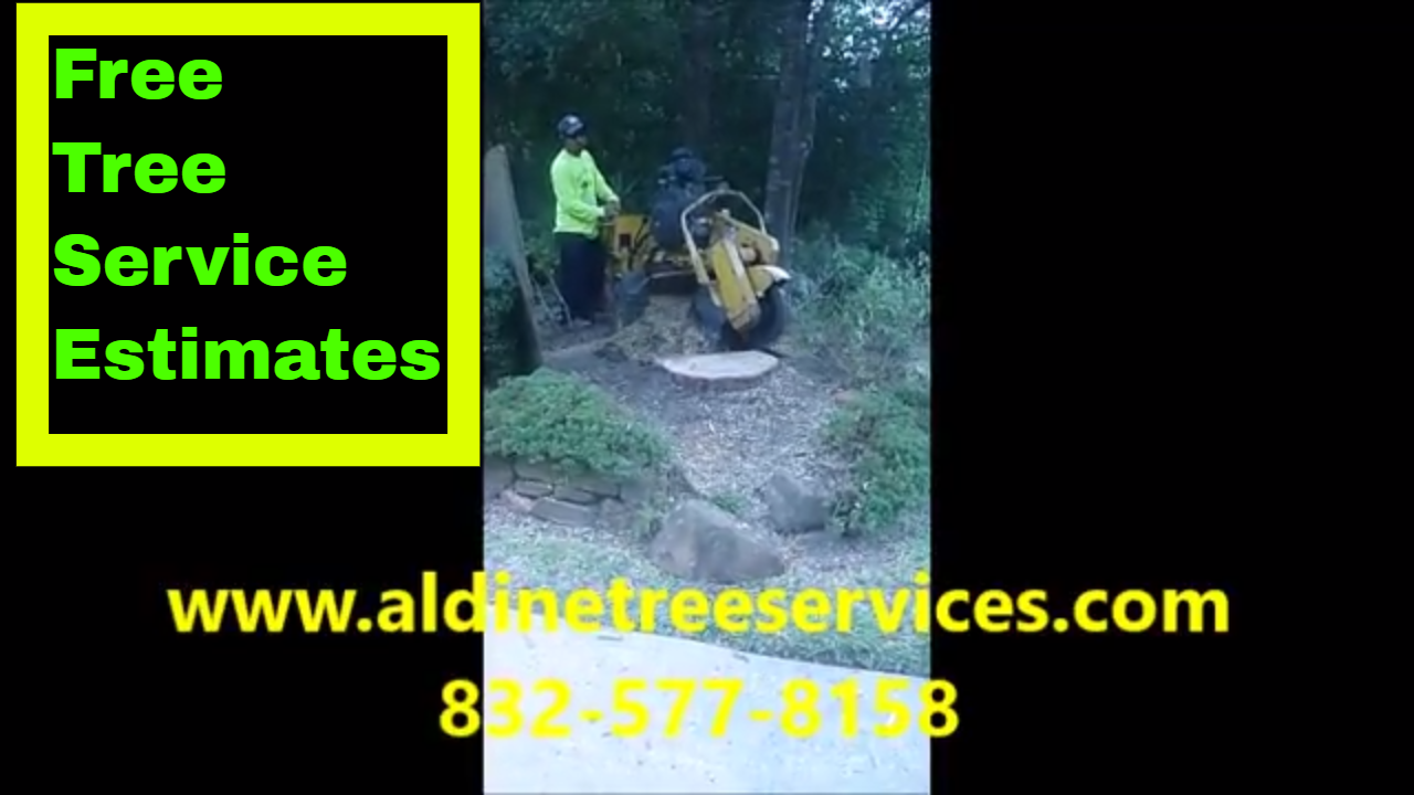 https://aldinetreeservices.com/ How much does it cost to ...