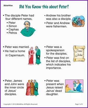 Did You Know the Disciple Peter (Story) - Kids Korner - BibleWise