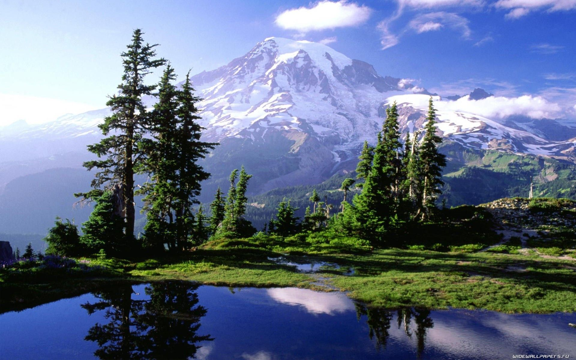Mount Rainier National Park WA