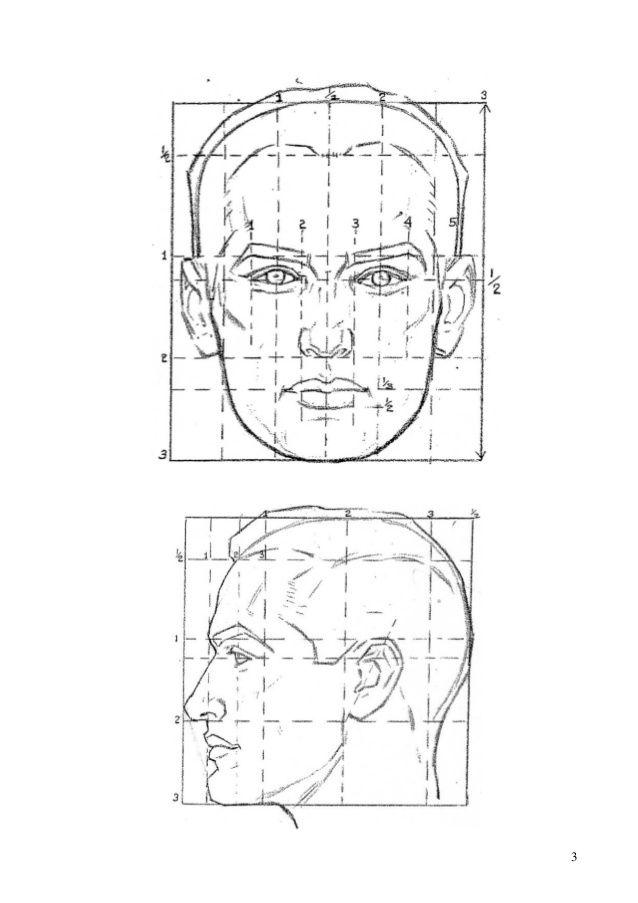 Canon cabeza humana}} | Drawing | Pinterest | Cabeza humana, Canon y ...