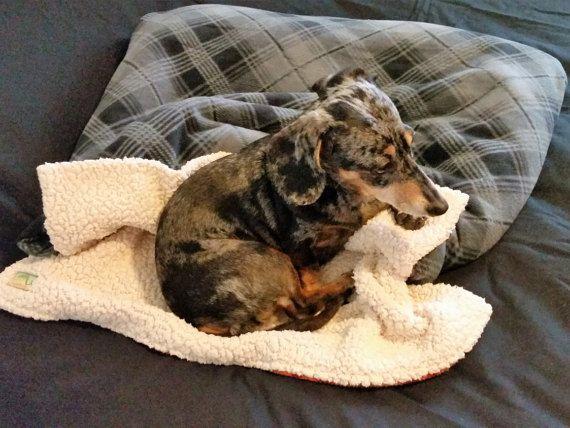 Dog Burrow Bag Dog Bed Dog Blanket Dog by TwoSweetPeasandaBoo